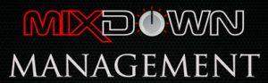 client logo mixdown management